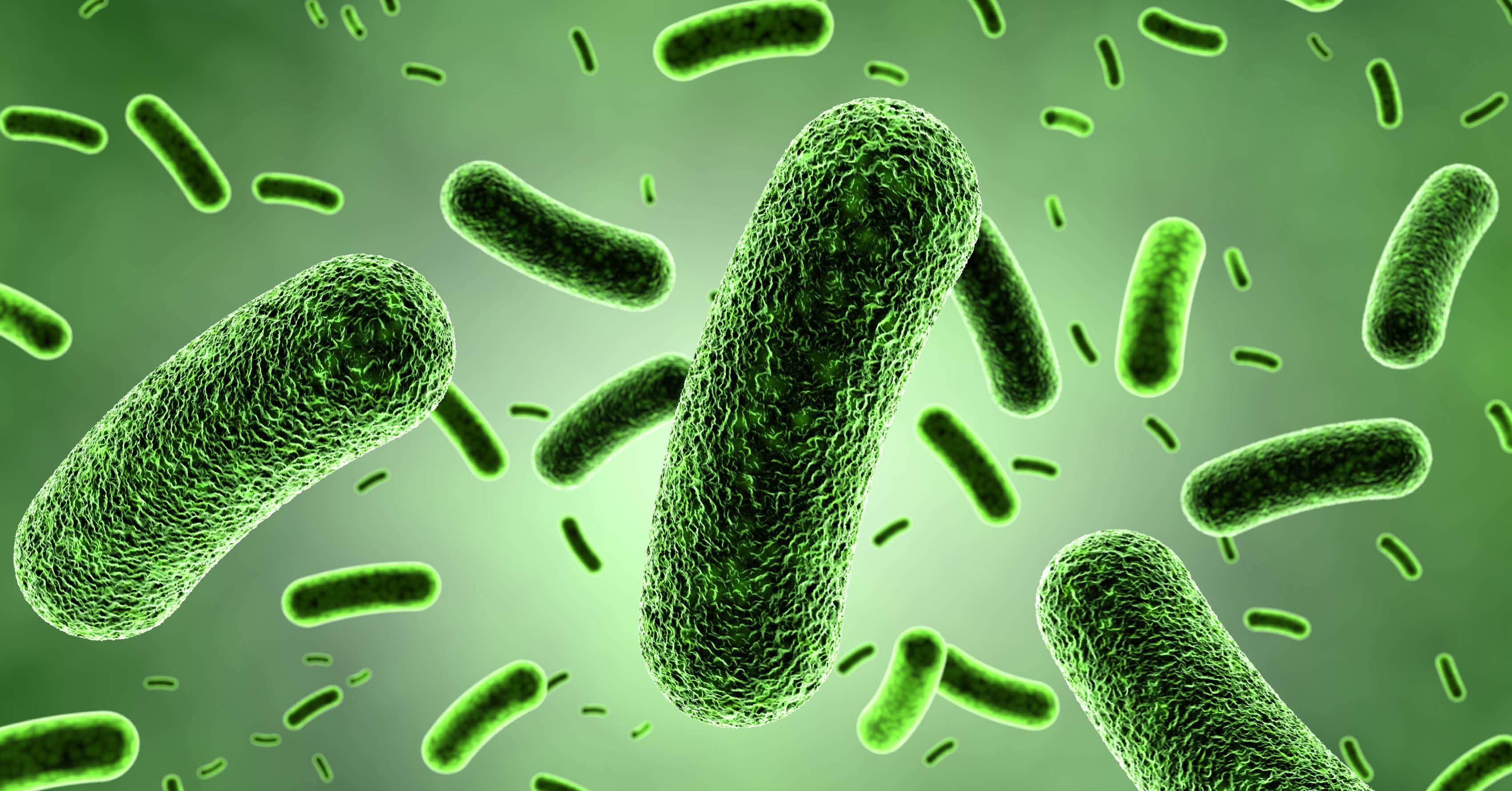 Legionella_Testing_B