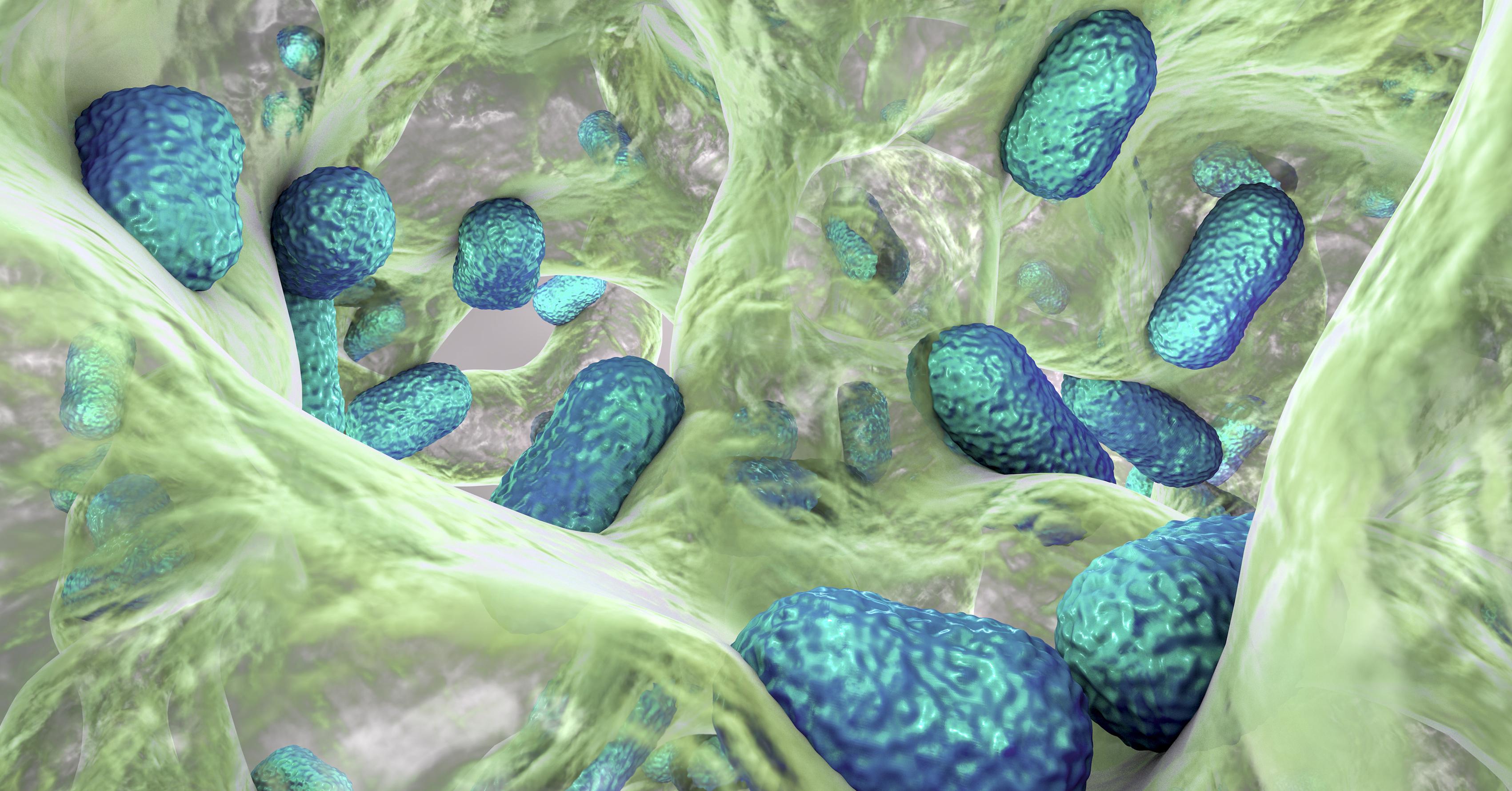 Legionella_Testing_Biofilm_2