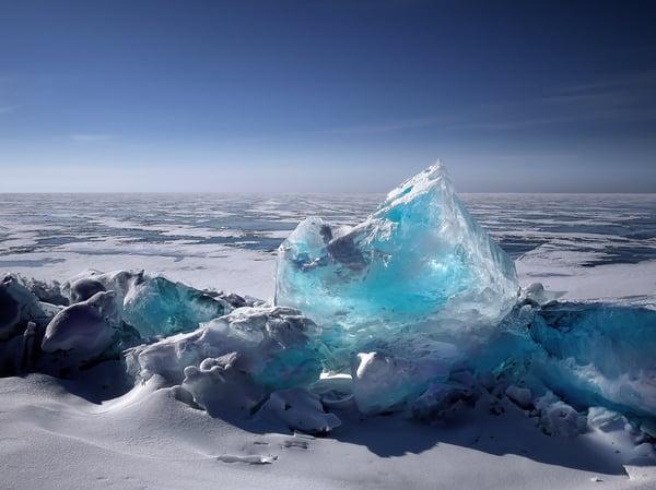Legionella climate change