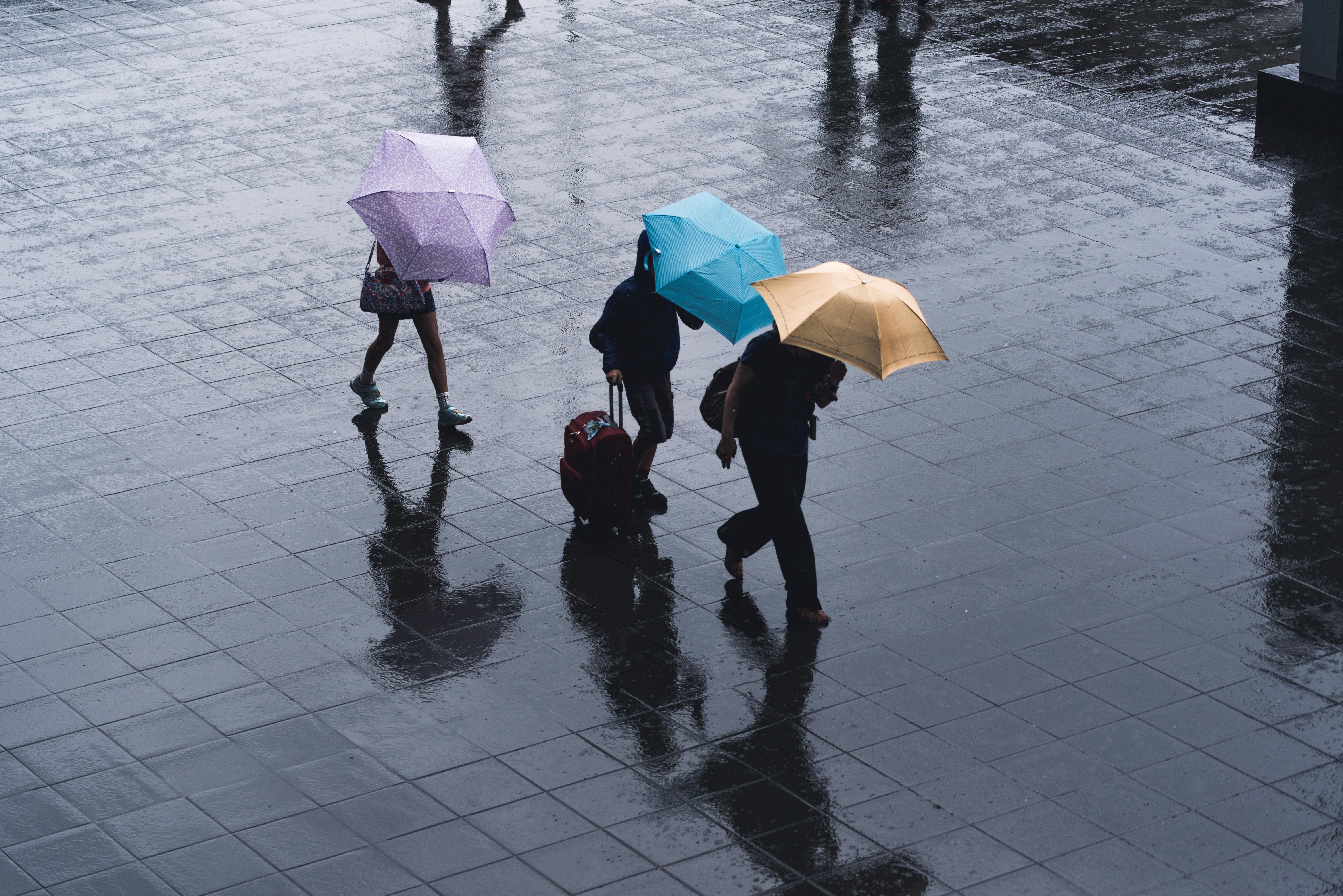 Rainfall Legionnaires Disease